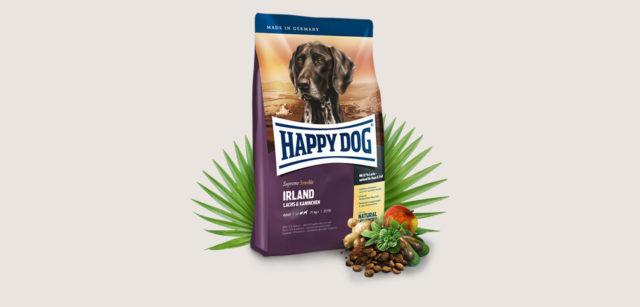 Happy dog: az ember és a kutya összeszokott már az asztalnál is